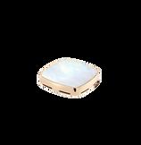ホワイトマザーオブパール 18Kイエローゴールド シグネットプラーク